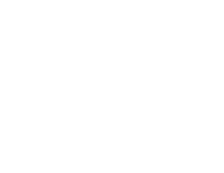 The Block Party Festival Logo