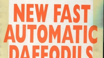 NEW FAST AUTOMATIC DAFFODILS 17_12_90