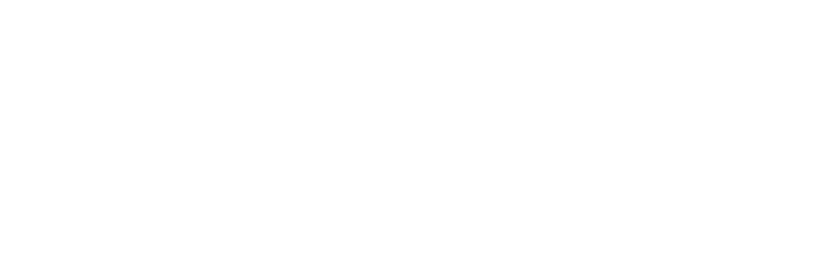 Brooklyn Zoo UK Logo