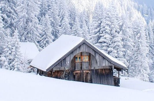 WINTER COOK HAUS REVISTED