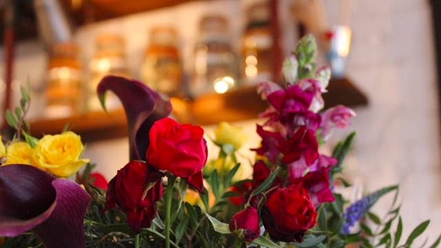 LOVE FOR ALL AT THE ELEPHANT THIS VALENTINE'S