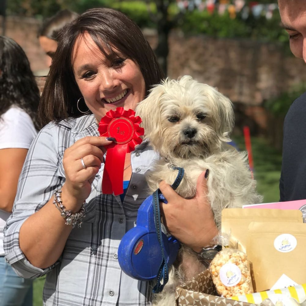 WOOLTON DOG SHOW 2019